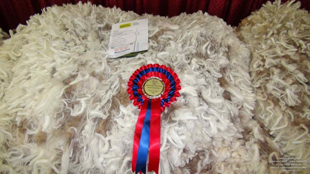 Grand Champion Fleece of Show