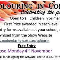 Fantastic Colour a Pig Competition This Year